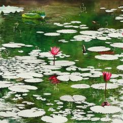 Aung Sint Myanmar Water Lily Pond 46x76 cm