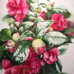 Janet Gilliland USA February Camellias 21x31""