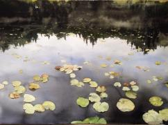 Peter Eugén Sweden Waterlilies in Sweden 105x76 cm