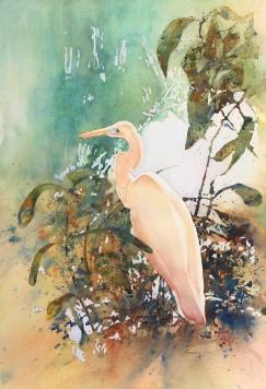 "Trisha Scarlett Milne - Canada. Great Egret. 15x22""."