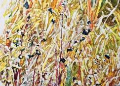 """Weiqi Zhou - Canada. Lush Grass. 11x15""""."""