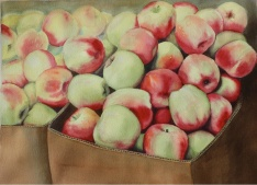 "Margo Blackell - Canada. Autumn's Apple. 11x15""."
