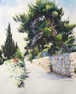 Beni Gassenbauer Israel Brightness