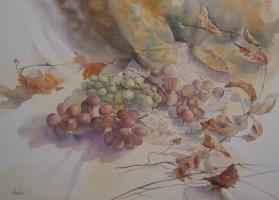 Keiko Hoshino Spain-Japan Grapes