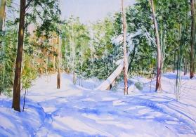 Sally Martin Canada Sun, Snow, Shadows