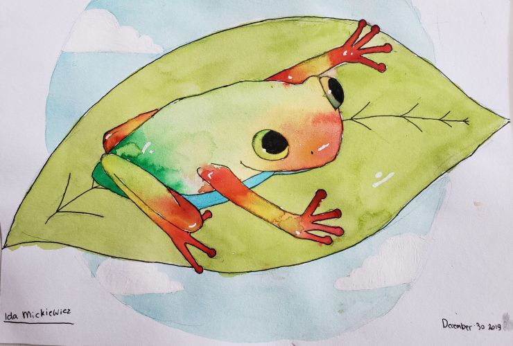 Rainbow Frog_Ida_Mickiewicz-10